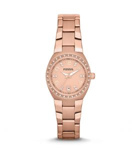 Ceas de dama original Fossil Colleague AM4508